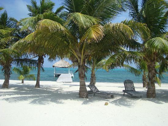 Tara del Sol: La playa