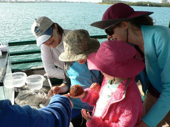 Sarasota Bay Explorers: Checking out our catch back on the boat.