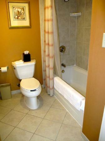 Tiny Bathroom with basic tub