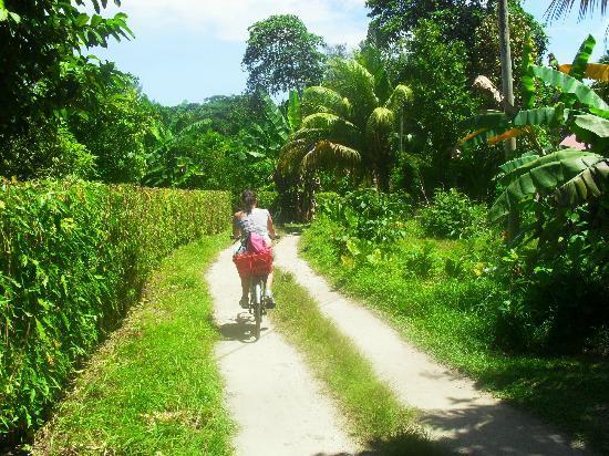 Villa Veuve : il sentiero per uscire dall'hotel