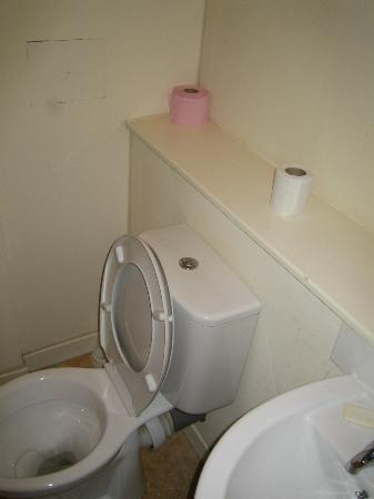York House Hotel: Pink toilet paper? Where do you still sell that product?