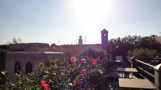 Riad Dar Darma: Roof Terrace with view to one of many mosques