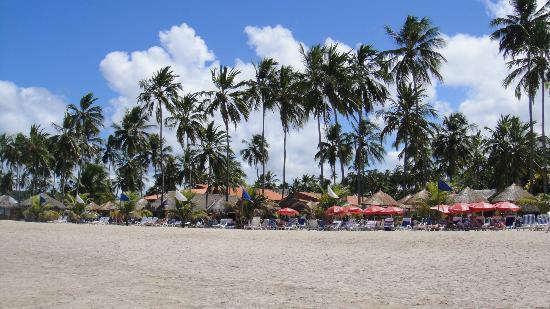 Salinas do Maragogi All Inclusive Resort: Vontade de acordar aqui todos os dias