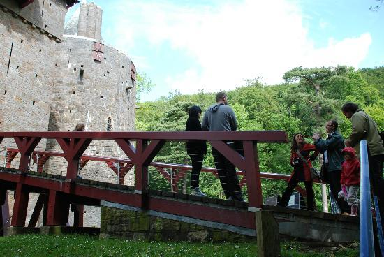 The Castell Coch Tour: Woodland setting