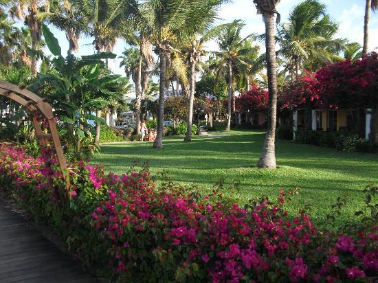 Beaches Turks & Caicos Resort Villages & Spa: Carribbean Village Grounds