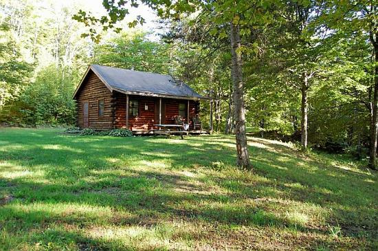 Birch Meadow Luxury Log Cabins & B&B : Our cabin