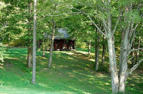 Birch Meadow Luxury Log Cabins & B&B: Grounds