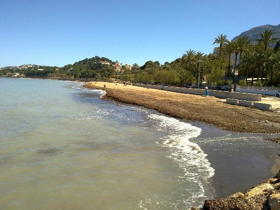 Port Denia: Playa a 50 metros del Hotel
