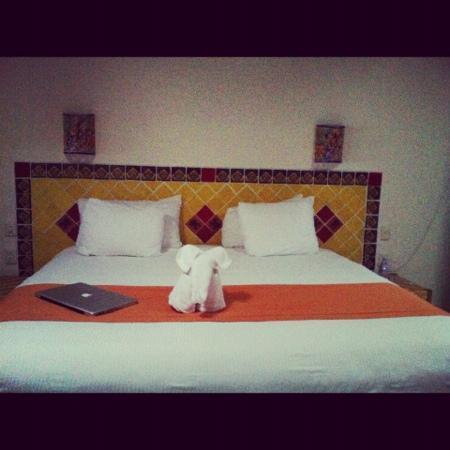 Las Ranitas Eco-boutique Hotel: hotel las ranitas
