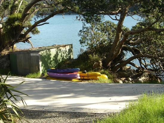 Great Barrier Lodge: Lodge Kayaks