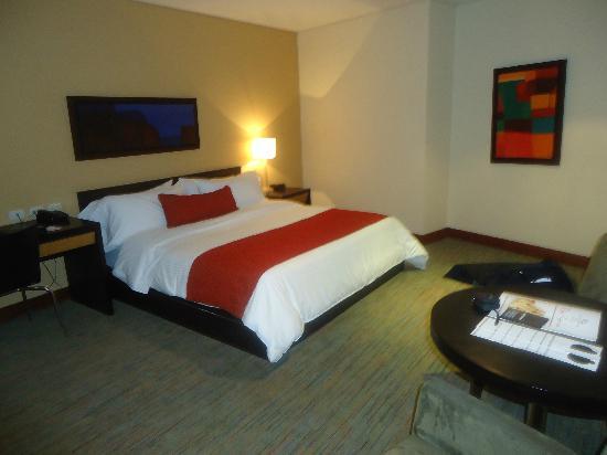 Hotel San Fernando Plaza Medellin: Habitacion doble