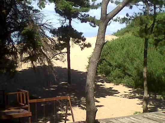 Hoteles En Mar De Las Pampas