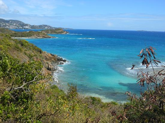 Virgin Islands Campground: View from road near Campground
