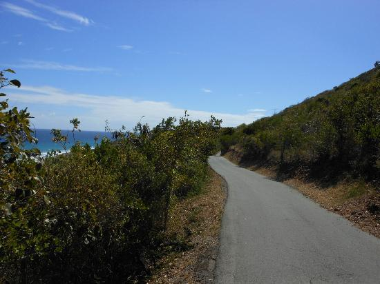 Virgin Islands Campground : Road around Water Island