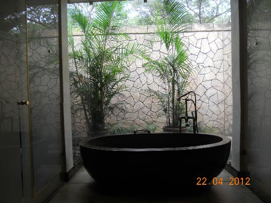 Forest Suites Hotel: Bathroom