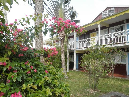 La Maison Creole: Hôtel côté jardin