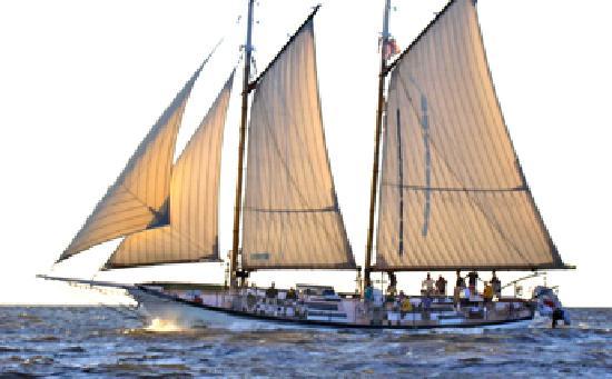Bay Sail: Windy Day - Appledore IV
