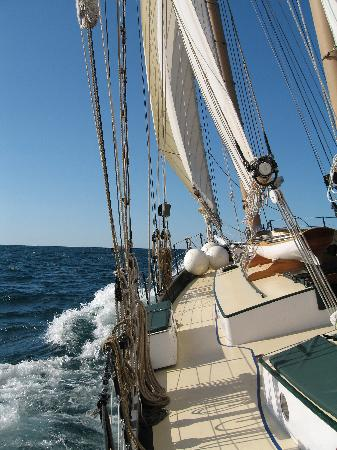 Bay Sail: Close Hauled - Appledore IV