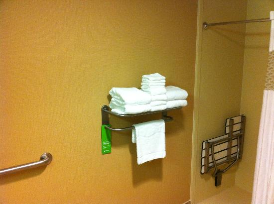 Hampton Inn & Suites Austin Lakeway : Towel Rack / Shower