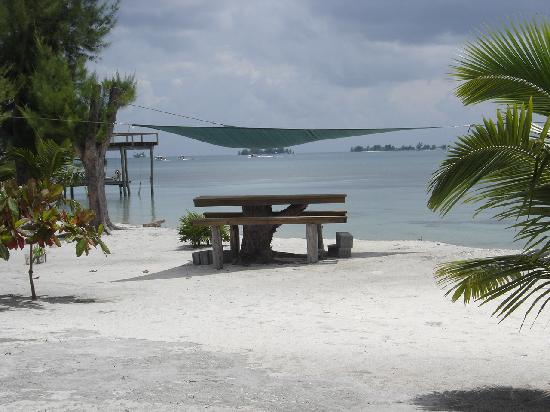 Purple Pelican Grill: Shaded beach side table with view of cays