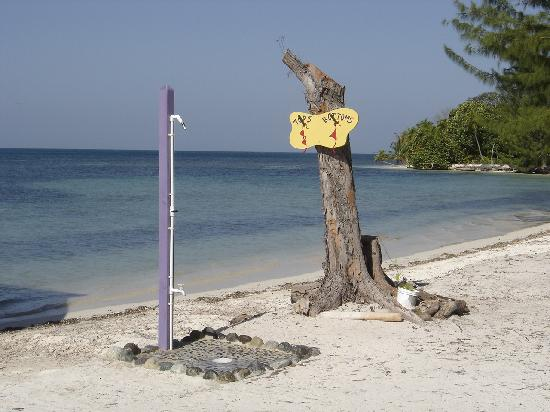 Purple Pelican Grill: Fresh water beach side shower