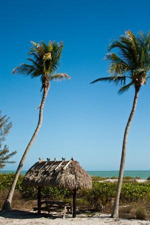 Mitchell's Sandcastles: Tiki hut!