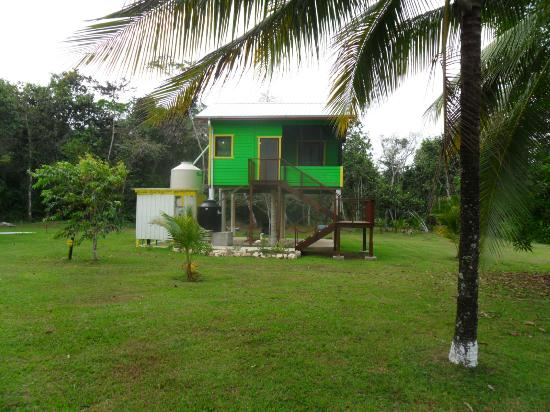 Lower Dover Field Station & Jungle Lodge: The Rasta Cabana