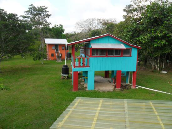 Lower Dover Field Station & Jungle Lodge 사진