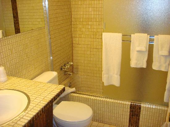 St. Moritz Lodge & Condominiums: Banheiro