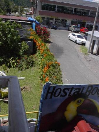 Hostal Boquete: view from front bedroom