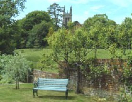 Fullers Earth Dorset B&B: Cattistock Church from the Walled Garden