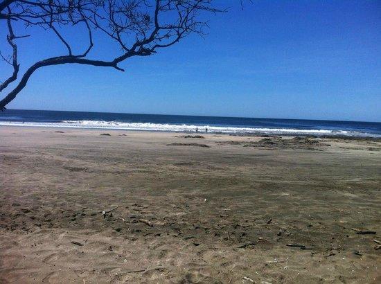 Pura Vida House : Local beach about 15 minutes away.