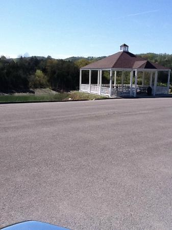 Woodlake Lodge: The picnic area