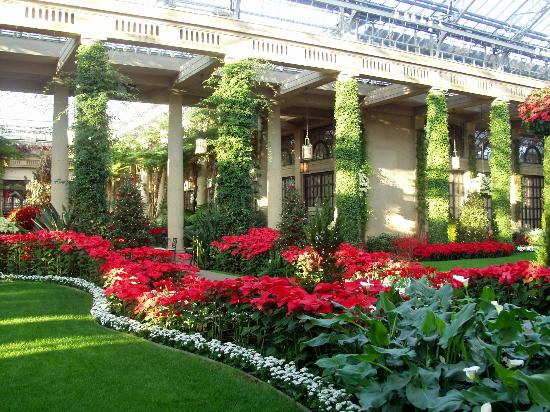 Longwood Gardens: Winter Theme Inside The Main Conservatory