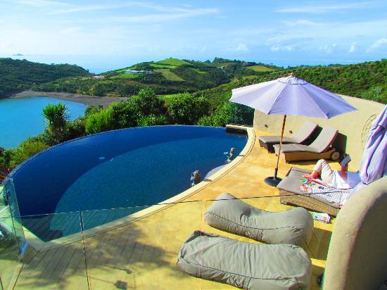 Delamore Lodge: Am Pool
