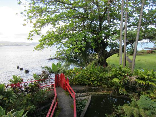 Uncle Billy's Hilo Bay Hotel: View from room
