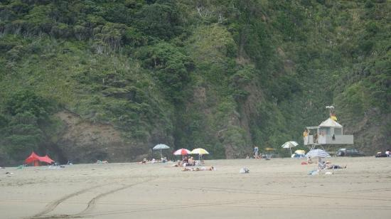 Bethells Beach: A crowded day at Bethells