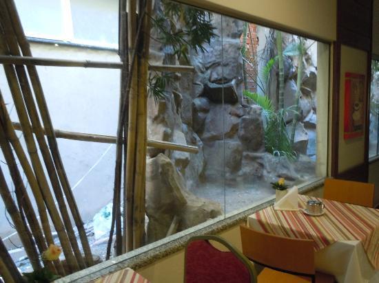 베스트 웨스턴 호텔 타로바 익스프레스 사진