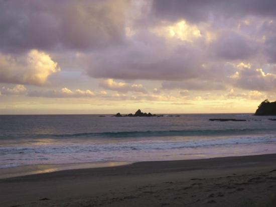Otamure Bay (Whananaki) Campsite: Sunrise view from Campsite