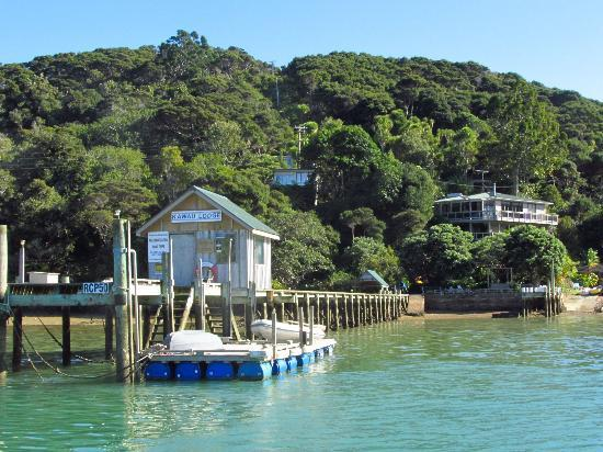 Kawau Lodge: Kawau Experience wharf, lodge on right