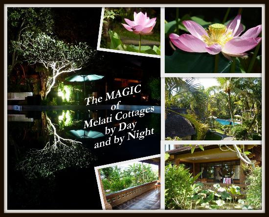 เมลาทิ คอทเทจส์: The Magic of Melati Cottages by Day and by Night