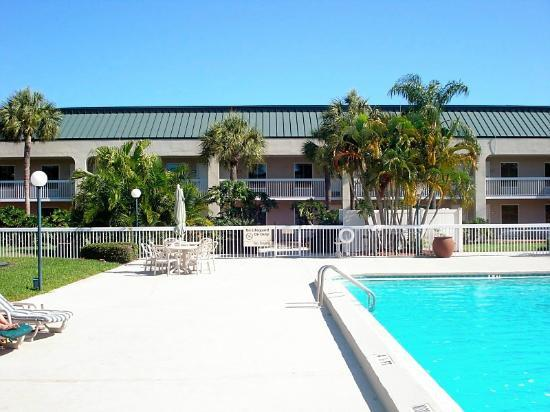 Hampton Inn Clearwater Central: Pool with entrance to lobby
