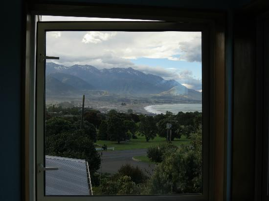 Nikau Lodge: View From the Room