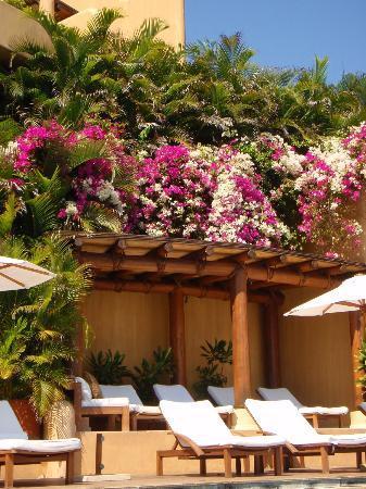 Capella Ixtapa: private pool lounges