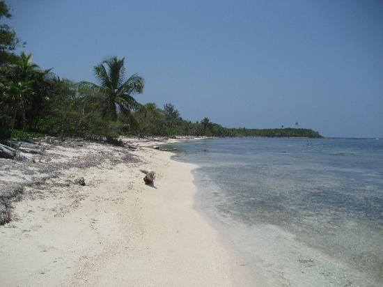 Kayak Utila: Beach on the North Side