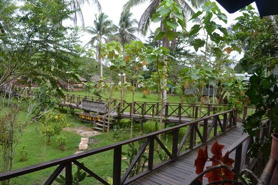 Good Country Tours - Day Tours: Sukau Bilit Rainforest Lodge
