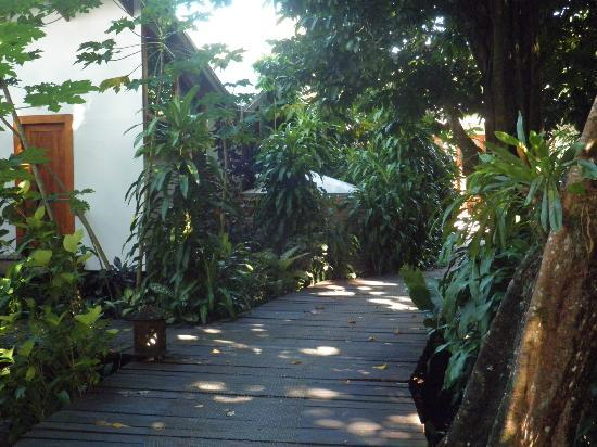 Matanivusi Surf Resort: The boardwalk to your secluded room