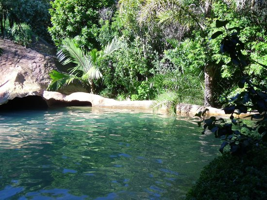 The Lost Spring: The pool