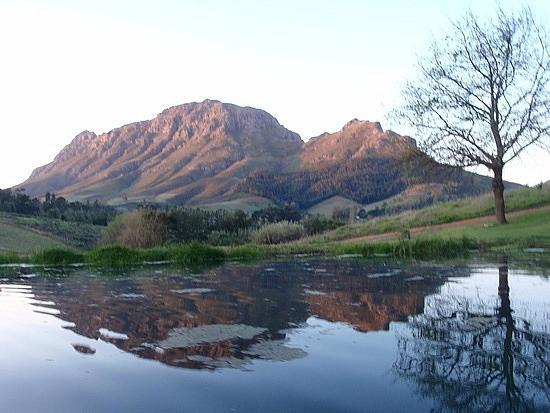 Alluvia Wine Estate: View from the lake