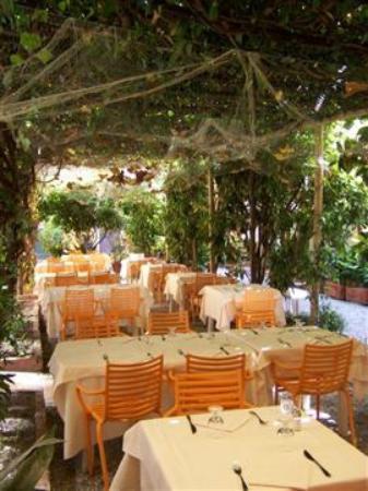 Hotel Lavagnese: Suggestivo pergolato